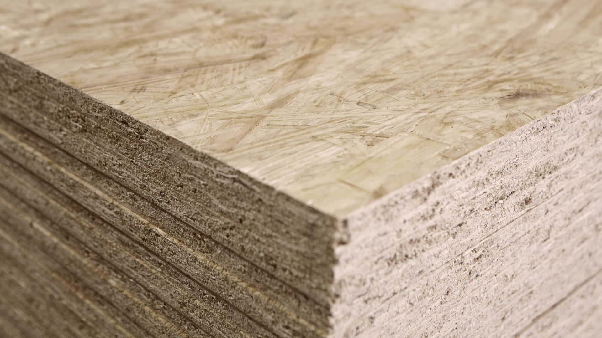 75% of the high quality OSB boards will be exported